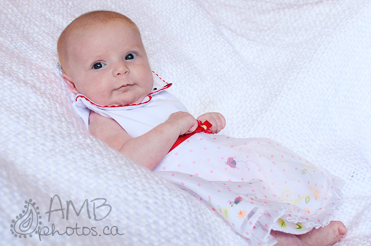 Red Deer Newborn Photograhy
