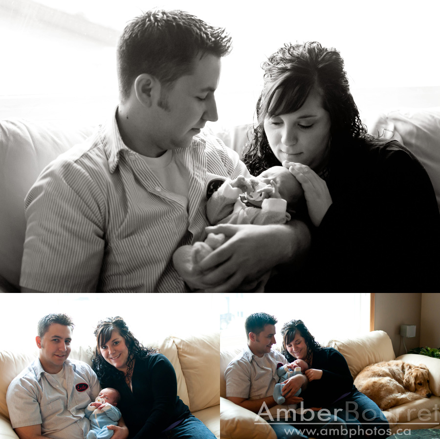 red deer newborn photography
