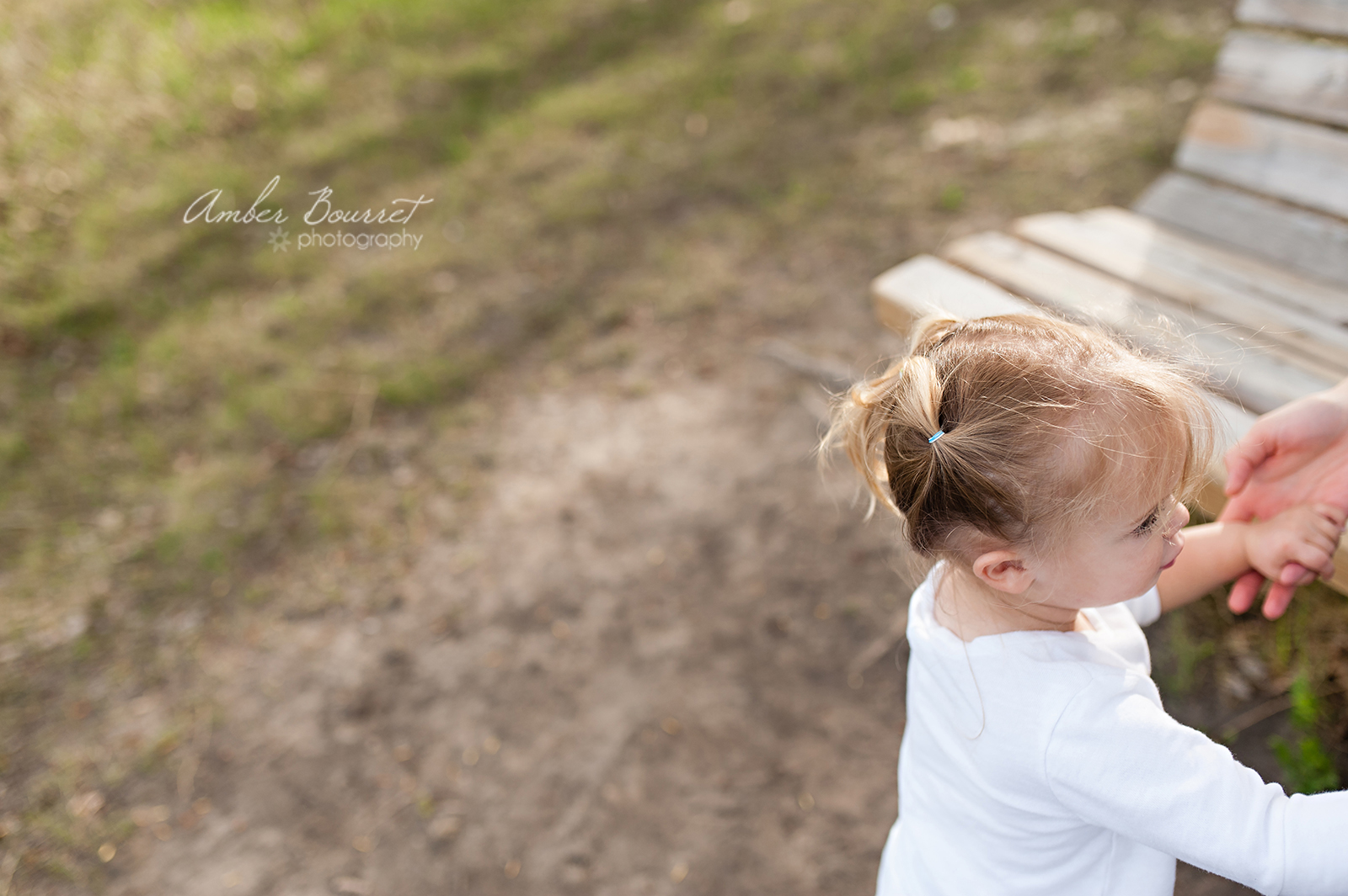 am red deer family photography (40)