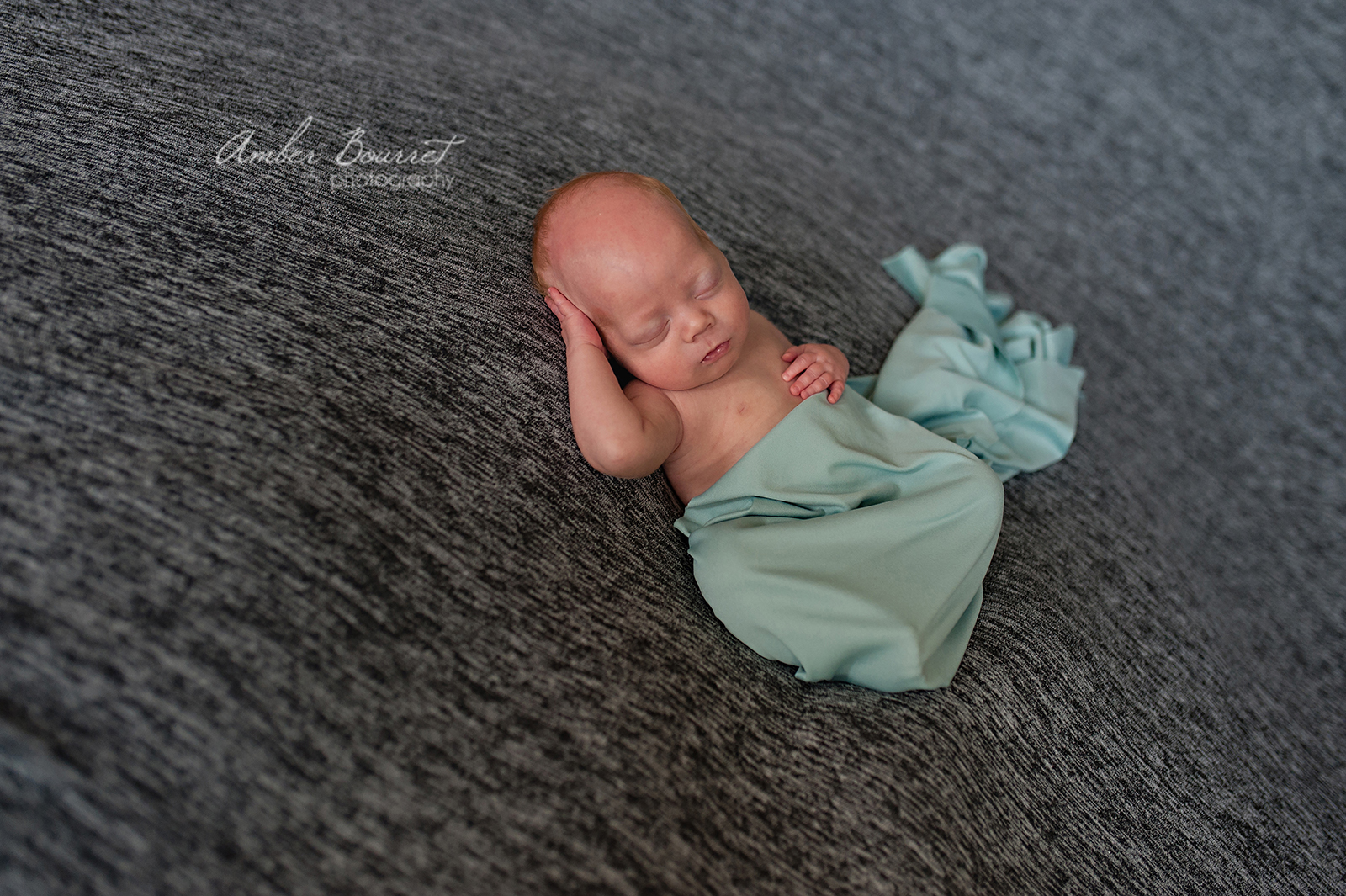red deer newborn photographers
