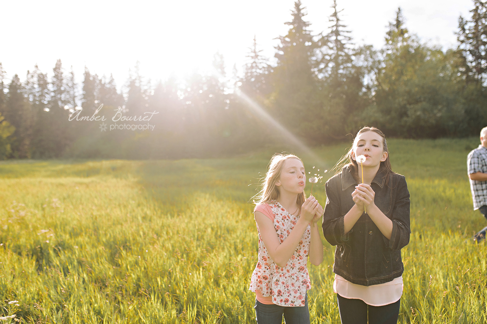 lw red deer family photographer (39)