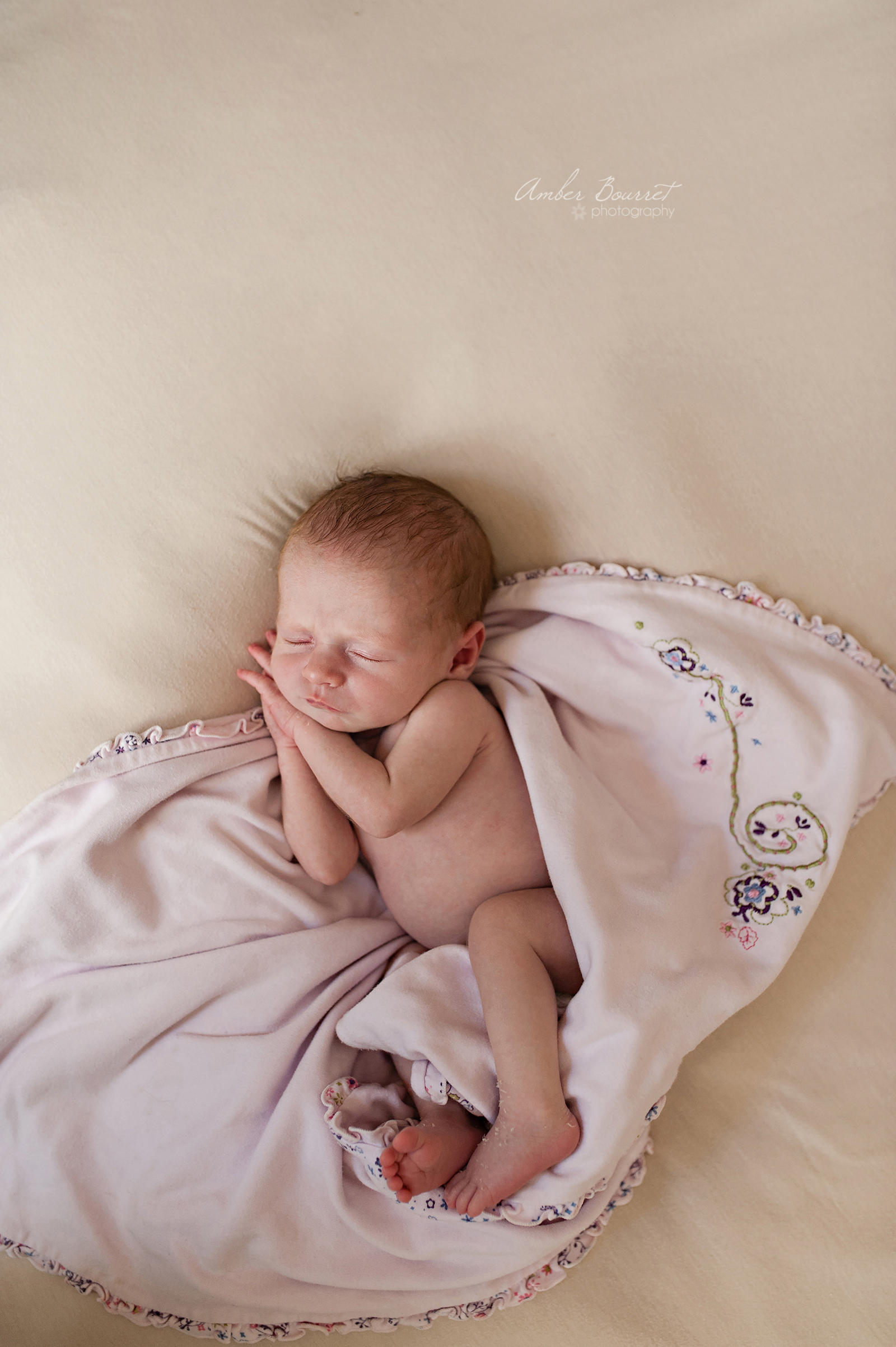 Alysa Newborn Photographers in Red Deer (60)