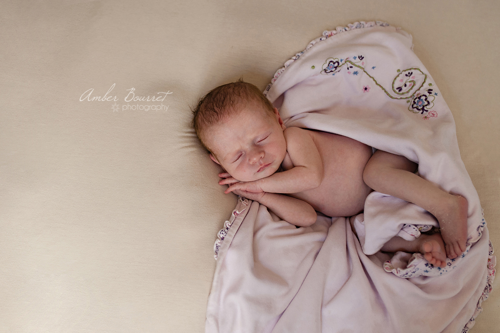 Alysa Newborn Photographers in Red Deer (65)