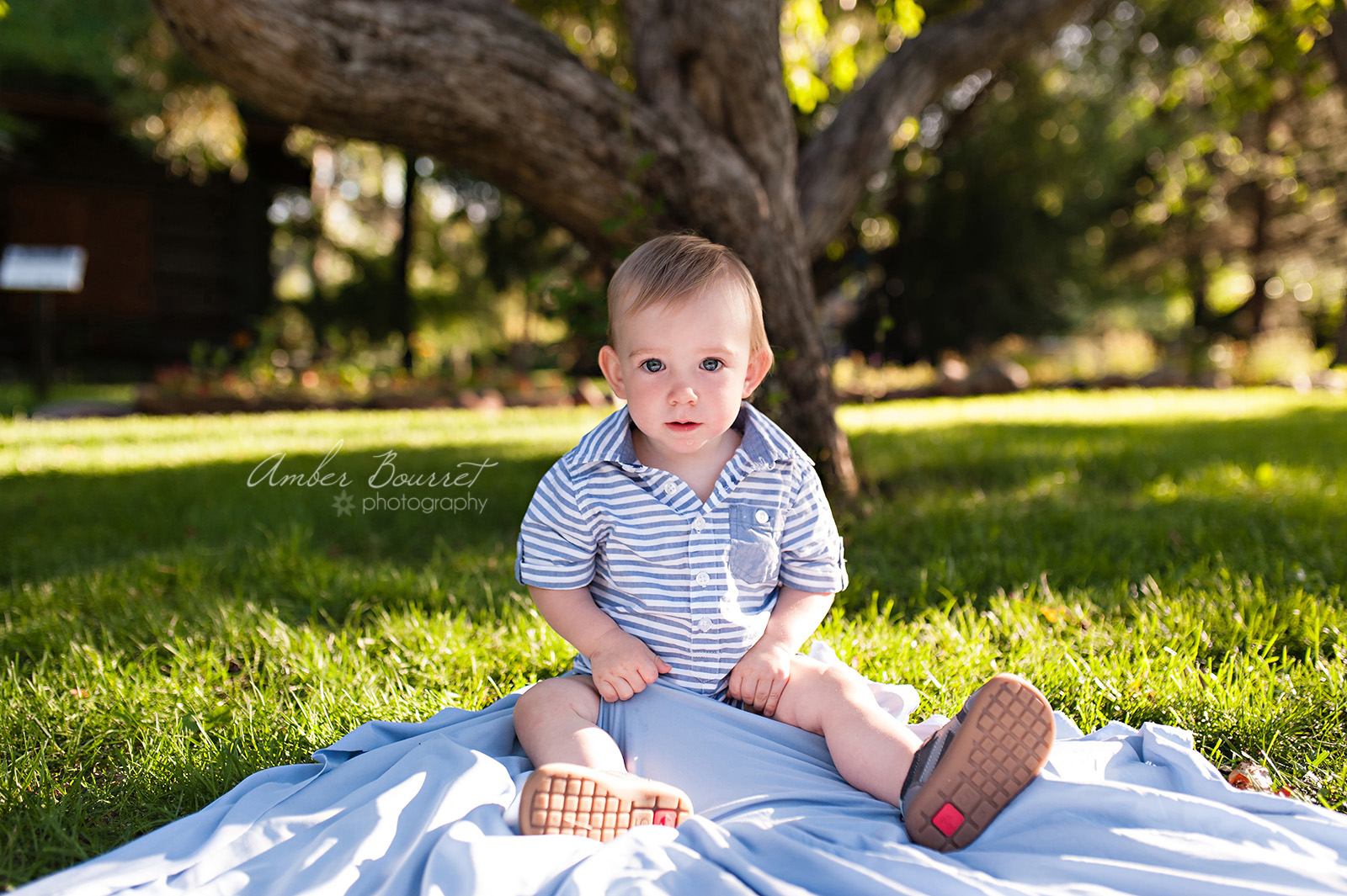 EFam Lifestyle Family Photographer in Red Deer (33)