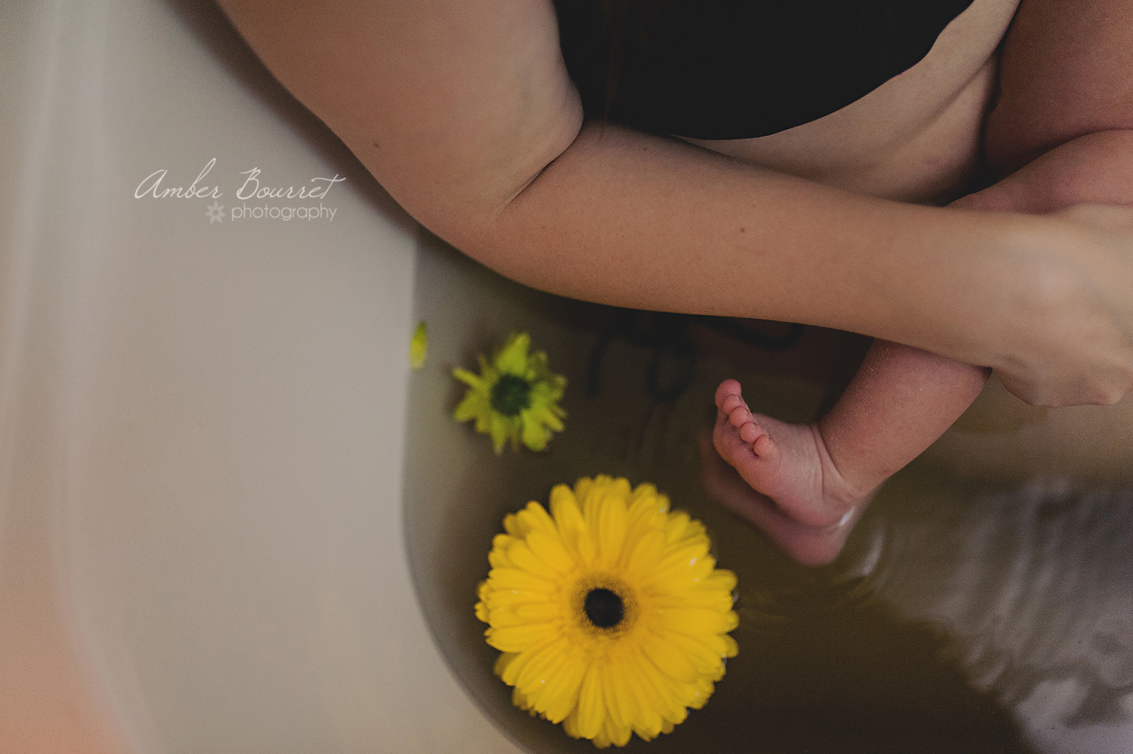 Red Deer Herbal Bath Newborn Photographer  (16)