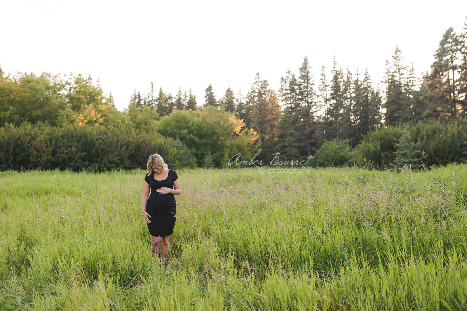 sm red deer maternity photographer (6)