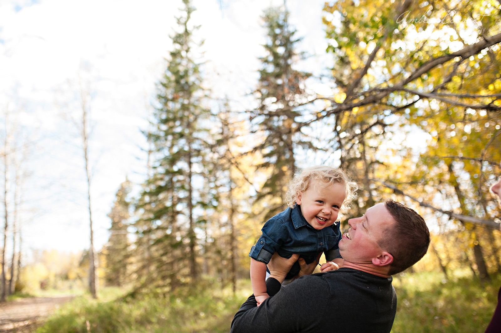 ah-red-deer-family-photographer-57