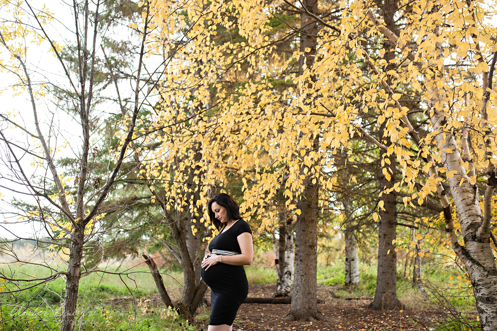shannon-red-deer-maternity-photographer-35